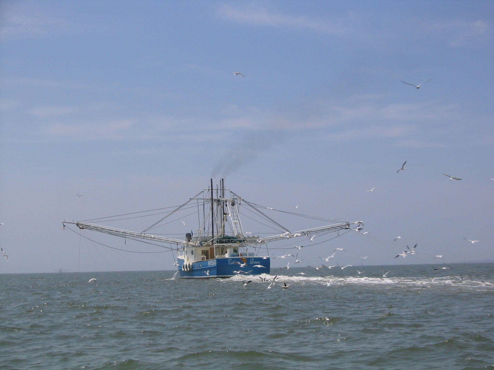 Georgia Shrimp Boats For Sale Html Autos Post